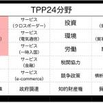TPP「関税の撤廃」はスピンであり「ISD条項・ ラチェット規定・ NVC条項 ・スナップバック条項・TPP24項目」が主目的である