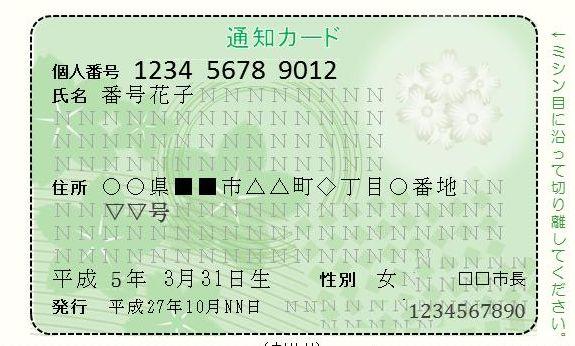 WS006009