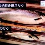 日本での遺伝子組み換え作物の栽培は禁止されていません。TPP合意によって農家は遺伝子組み換え作物の栽培をしないと生き残れなくさせられてしまいます。