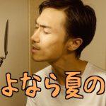 【再UP音楽動画】山下達郎「さよなら夏の日」 さゆふらっとまうんど