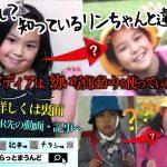 <我孫子ちらし>デザイン3(A4片面カラー)