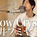 【動画】Snow Crystal/藤井フミヤ(Cover)